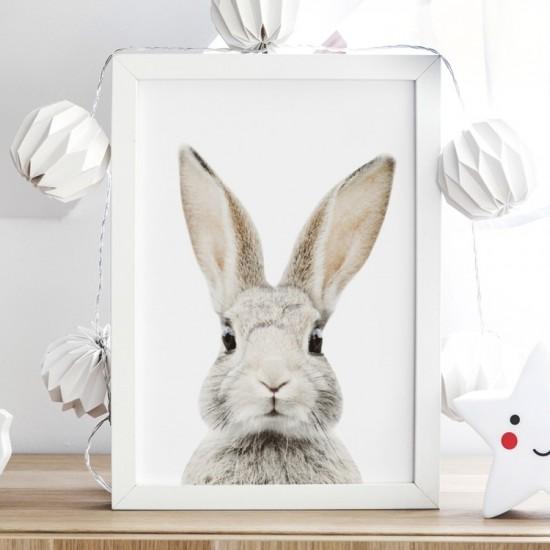 Biely plagát na stenu s králikom Štefanom