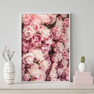 Plagát na stenu s ružovými kvetmi