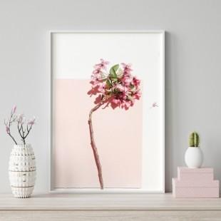 Ružovo biely plagát na stenu s rozkvitnutým kvetom