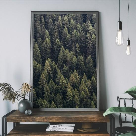 Plagát na stenu s pohľadom na les