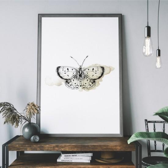 Plagát na stenu s motívom motýľa