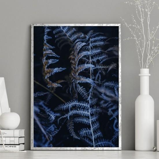 Čierny plagát na stenu s motívom zamrznutého papradia