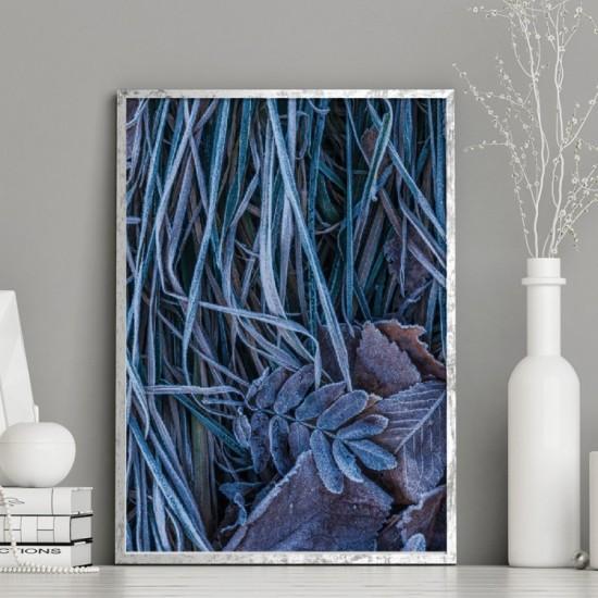 Plagát na stenu s motívom zamrznutých rastlín