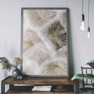 Plagát na stenu s makro motívom púpavy béžovej farby