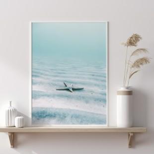Plagát na stenu s motívom Morská hviezdica