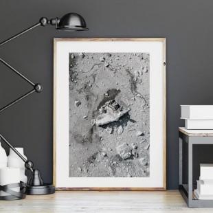 Plagát na stenu s motívom skál a piesku