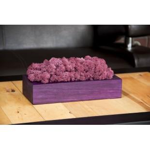 Fialový dekoračný mach v drevenom kvetináči