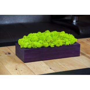 Handmade machová dekorácia v drevenom fialovom kvetináči