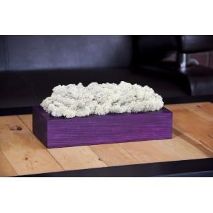 Machová biela handmade dekorácia vo fialovom drevenom kvetináči